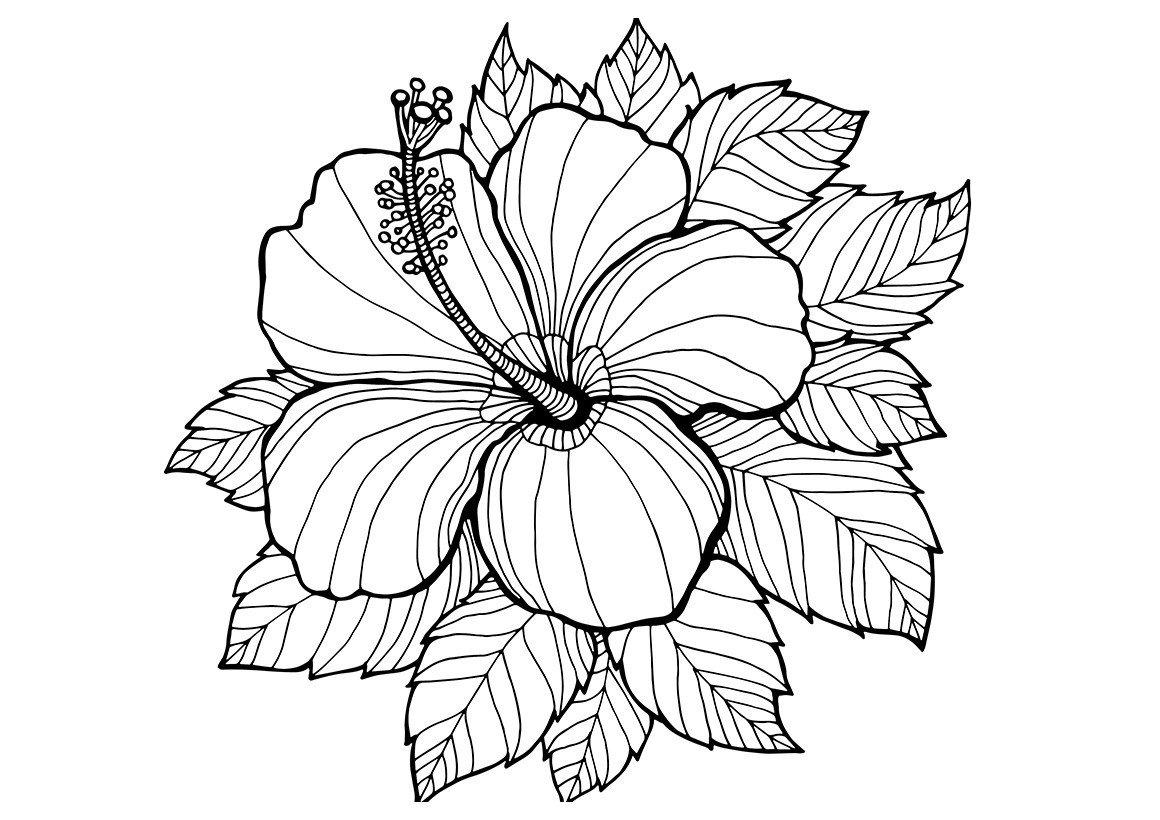 Арт-терапия Одинокий цветок - Картинка для раскрашивания красками-гуашью