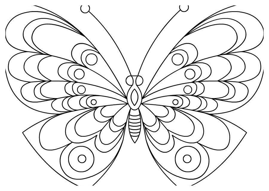 Бабочка с изумительным рисунком - Картинка для раскрашивания красками-гуашью