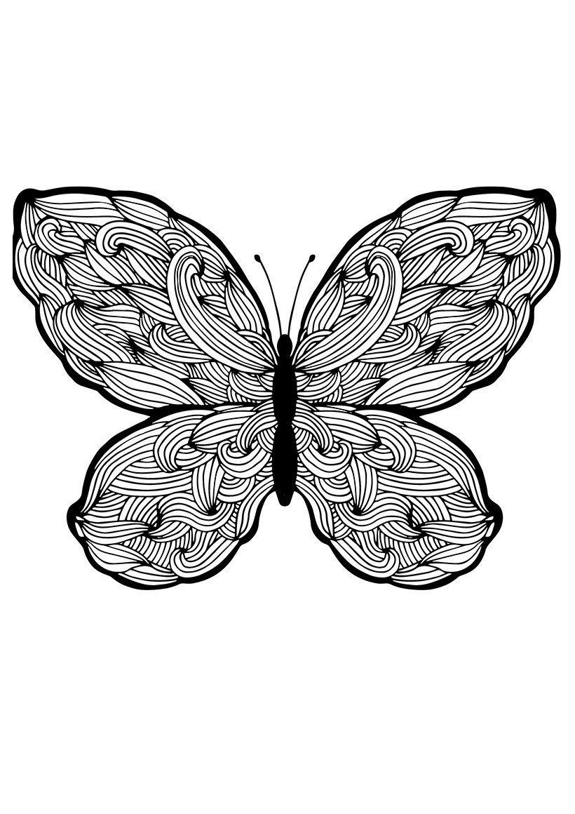 Бабочка с плетениями - Картинка для раскрашивания красками-гуашью