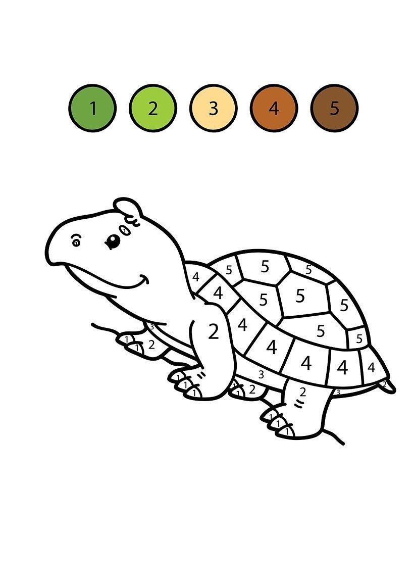 Картинка для раскраски «Черепаха по цифрам»