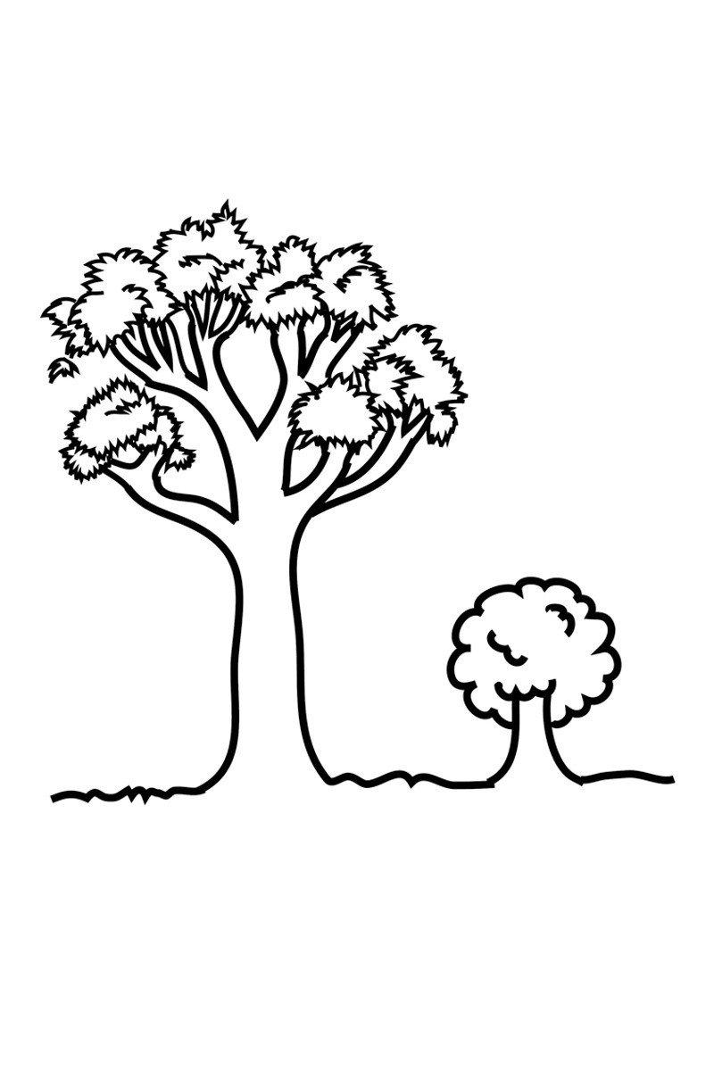Дерево большое и маленькое - Картинка для раскрашивания красками-гуашью