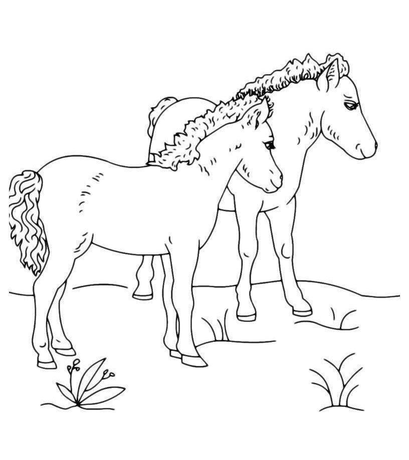 Картинка для раскраски «Две лошадки гуляют»