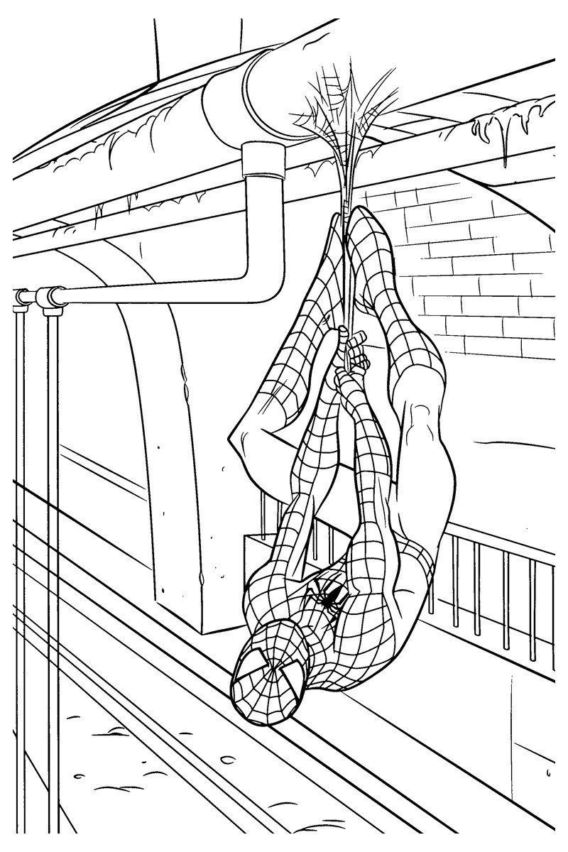 Картинка для раскраски «Новый Человек паук»