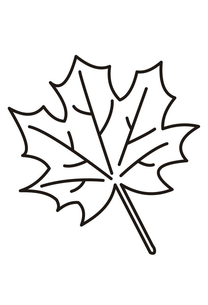 Картинка для раскраски «Падающий кленовый лист»