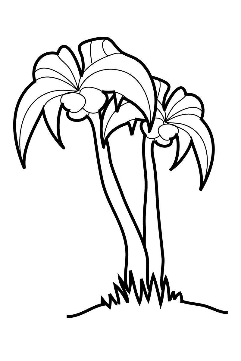 Пальма - Картинка для раскрашивания красками-гуашью