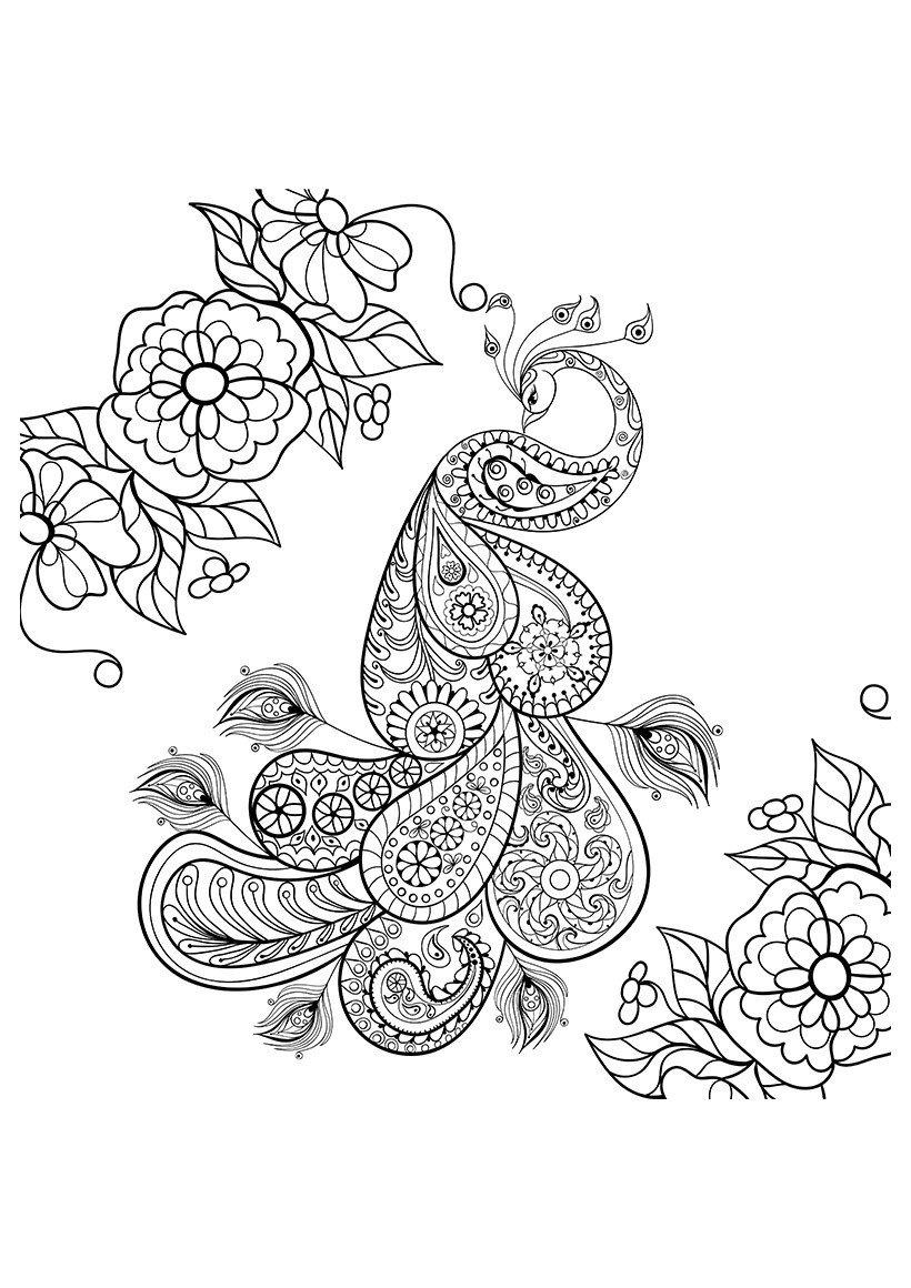 Павлин в саду - Картинка для раскрашивания красками-гуашью