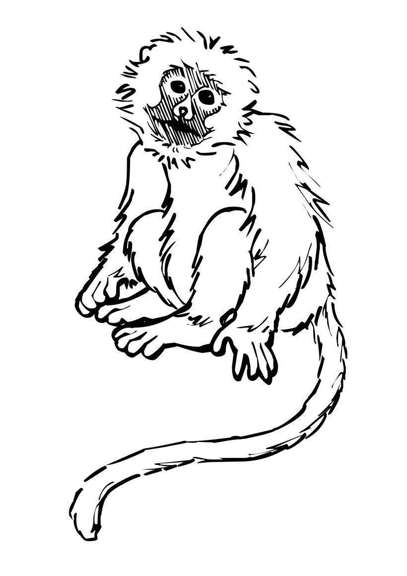 Печальная обезьяна - Картинка для раскрашивания красками-гуашью