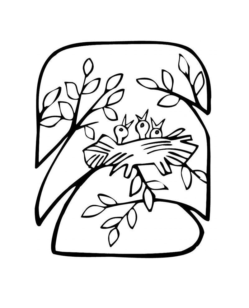 Птенцы - Картинка для раскрашивания красками-гуашью