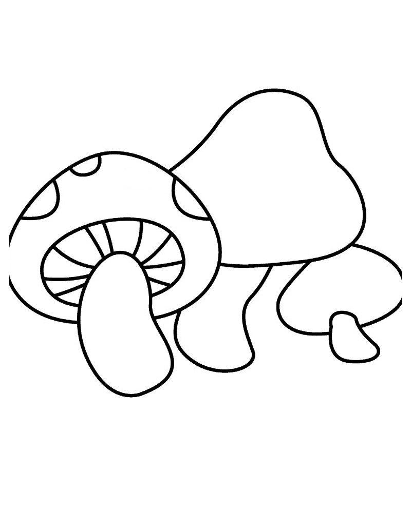 Шиитаке - Картинка для раскрашивания красками-гуашью