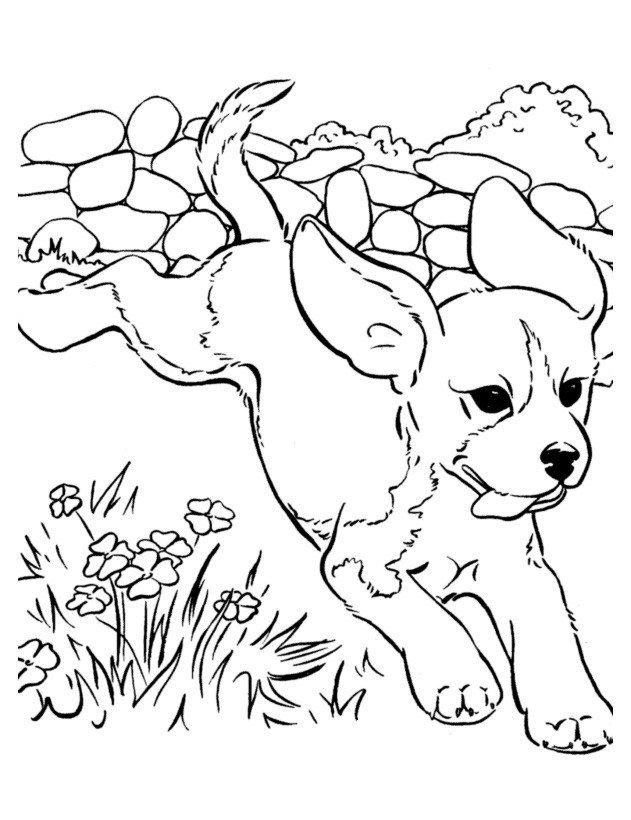 Собака убегает от обидчика - Картинка для раскрашивания красками-гуашью