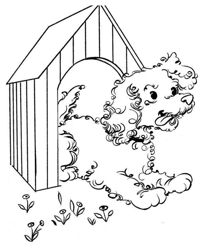 Картинка для раскраски «Собака выглядывает из будки»