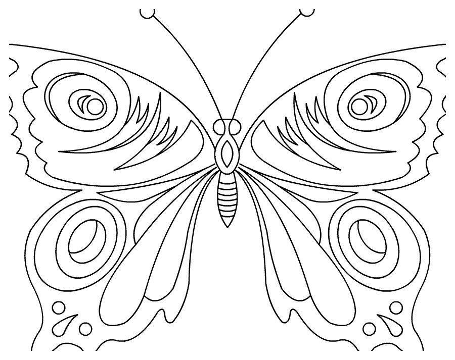 Царская бабочка - Картинка для раскрашивания красками-гуашью