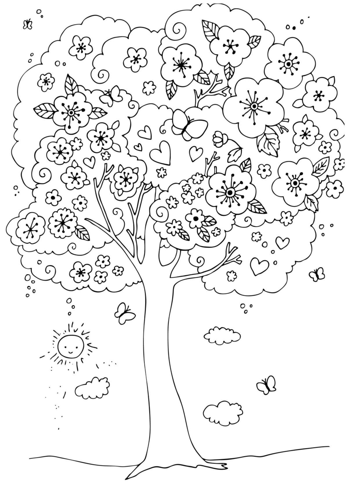 Цветущая вишня - Картинка для раскрашивания красками-гуашью