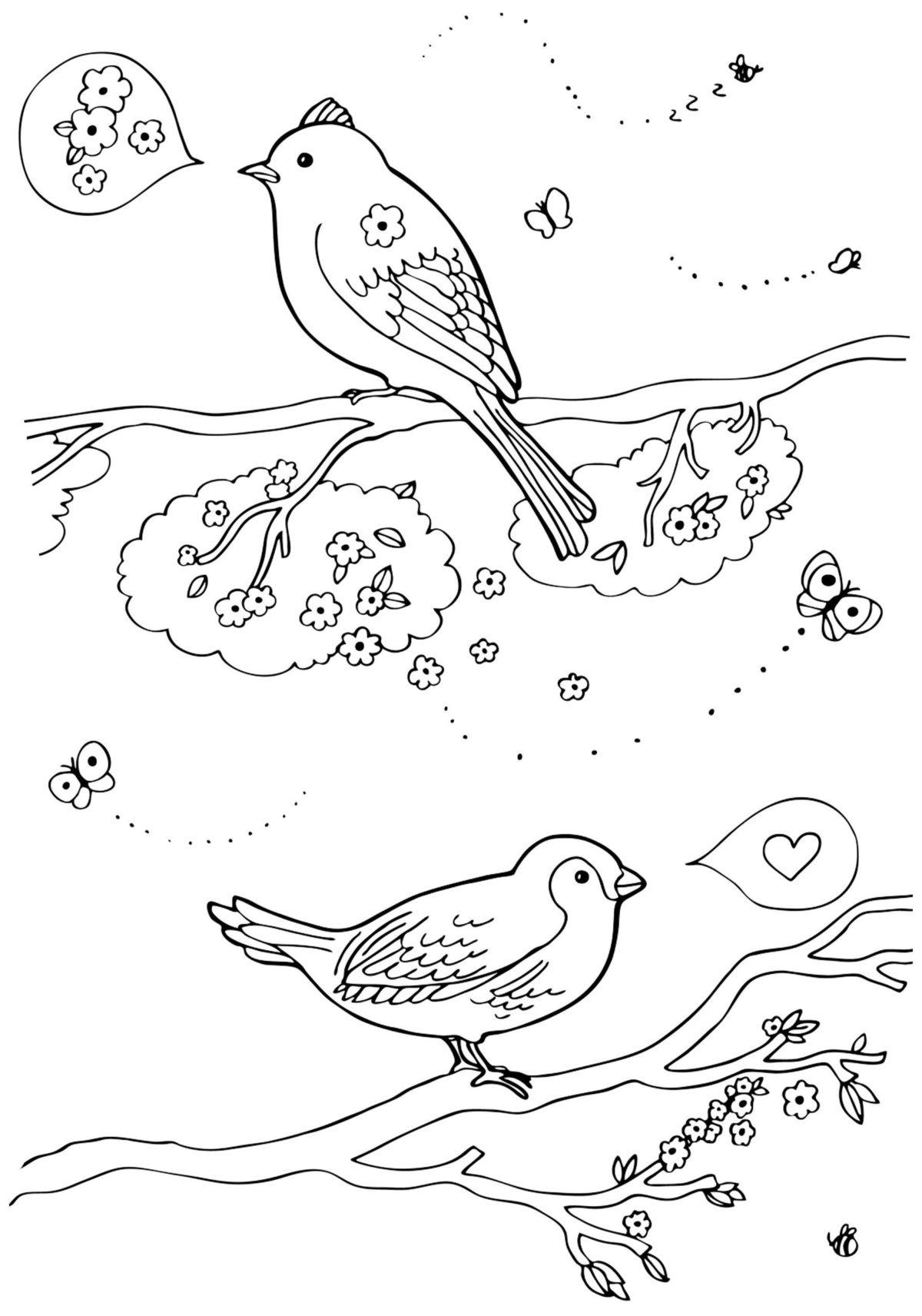 Весенние птицы - Картинка для раскрашивания красками-гуашью