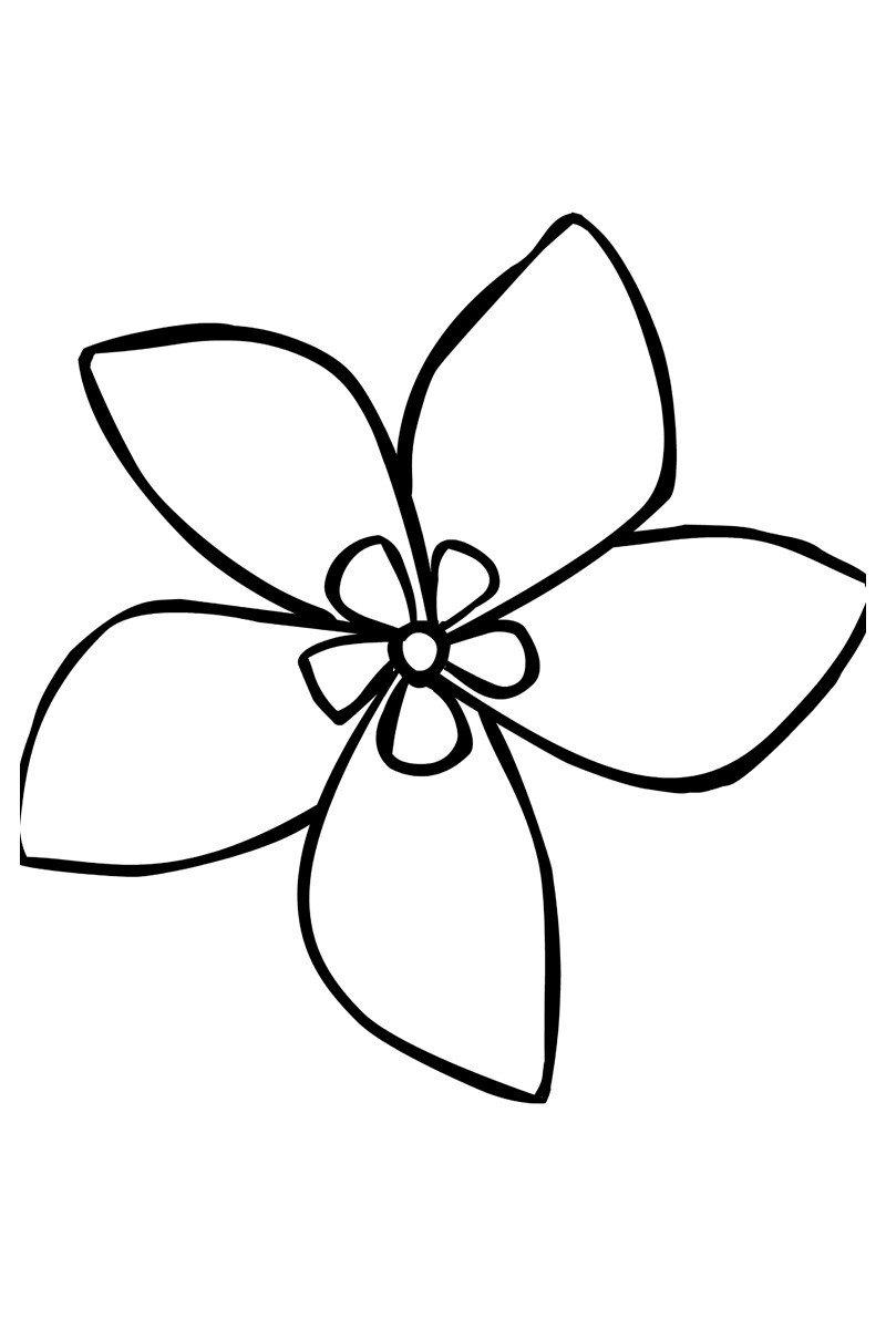 Жасмин - Картинка для раскрашивания красками-гуашью