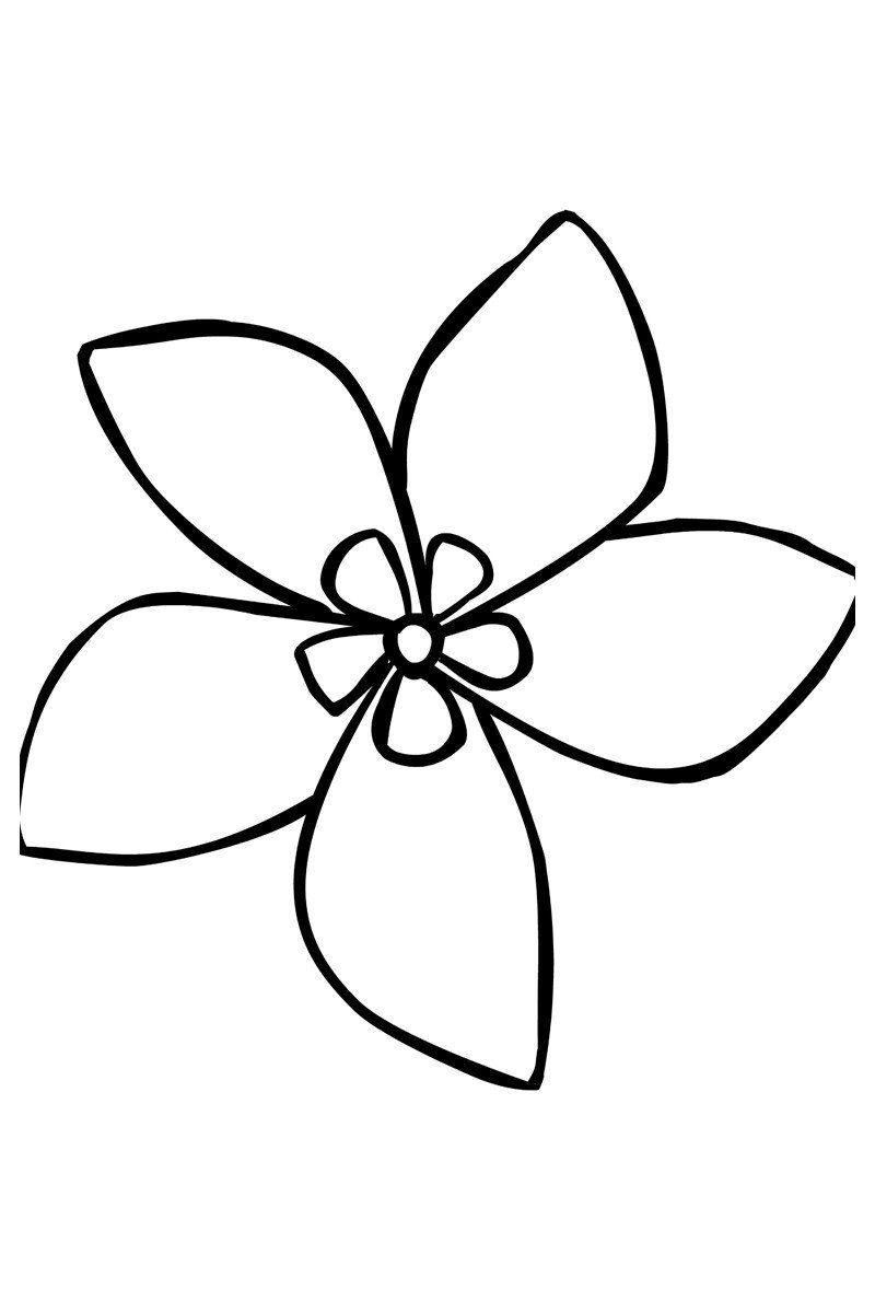 Картинка для раскраски «Жасмин»