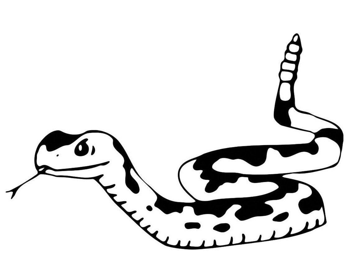 Змея выжидает - Картинка для раскрашивания красками-гуашью