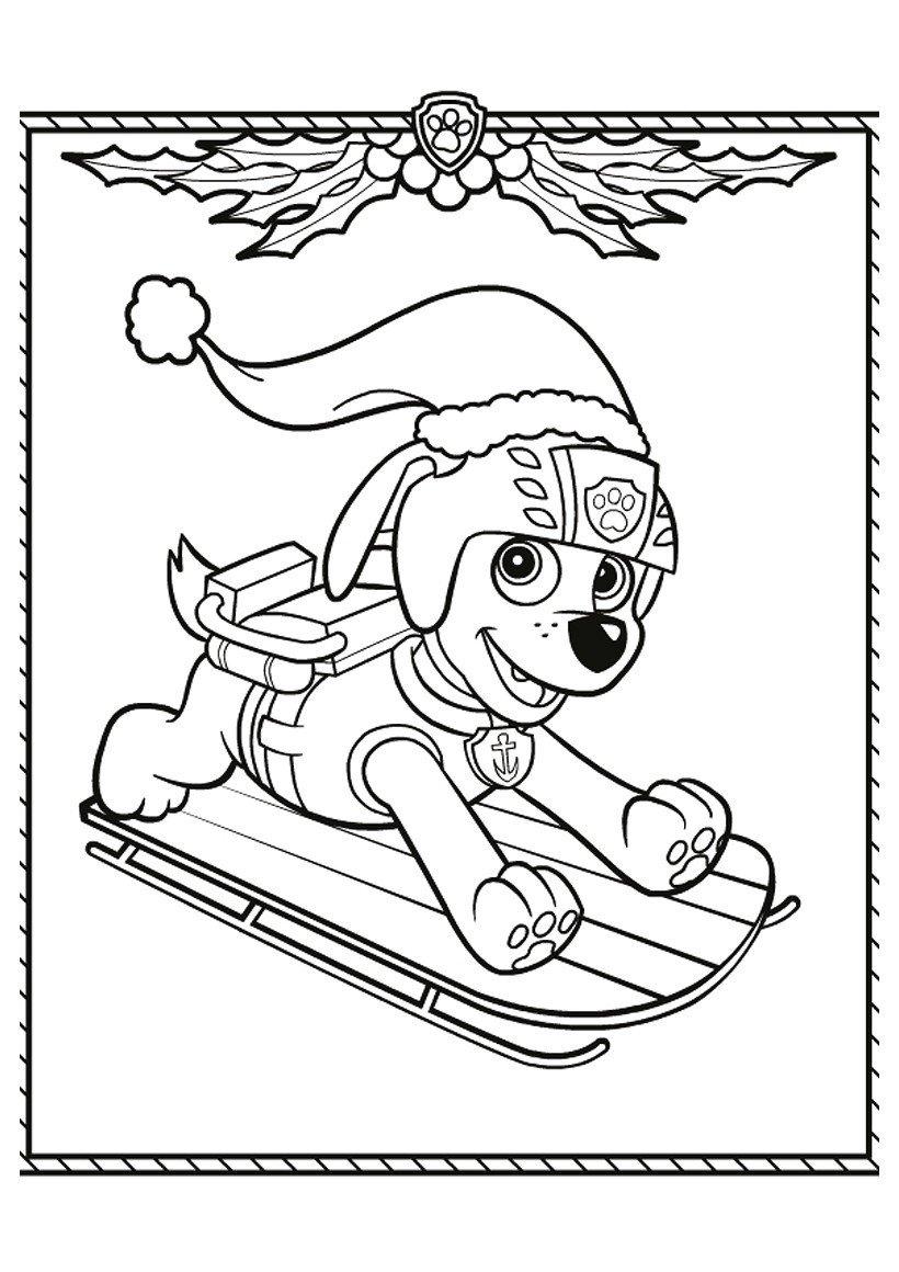 Зума на Рождество - Картинка для раскрашивания красками-гуашью